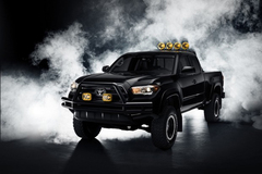 丰田推Tacoma皮卡特别版 新车确定量产