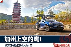 这5款车或将改写未来 特斯拉车型规划深度解析