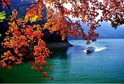 广州 从化/首先,从化作为广州最美的城市名片,具有得天独厚的地理生态...