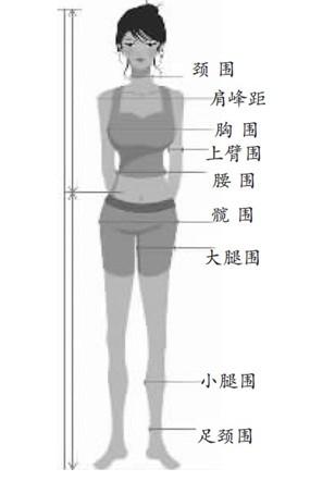 标准:胸围为身高一半