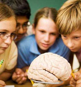 人际沟通,家庭教育,情商教育,情商培训,儿童教育,早教