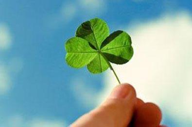 一日禅:种下快乐才能收获幸福