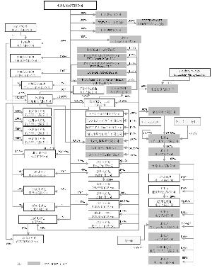 公司的股权结构图