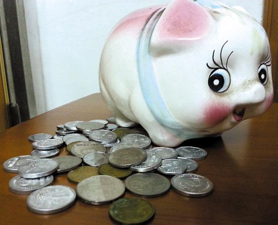 油桶变小猪的图片