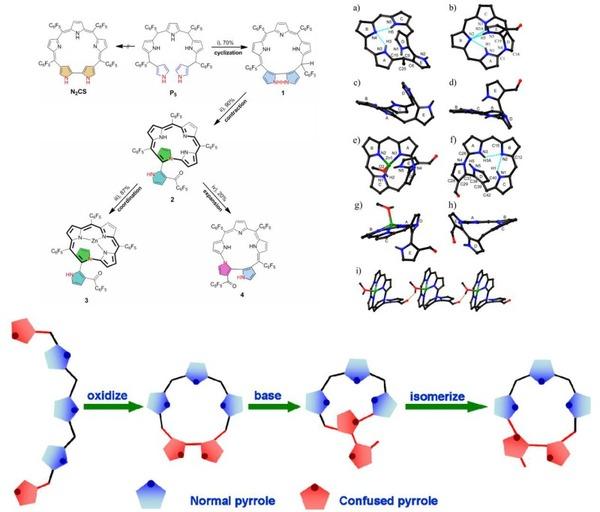 近年来,发展具有特殊结构和性能的新型大环化合物,特别是卟啉类似物异
