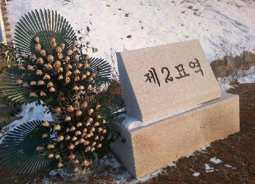 韩国坡州墓地中国志愿军遗骸或已发掘过半 墓