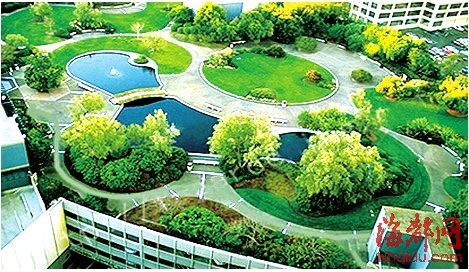 城区|绿地|居住区