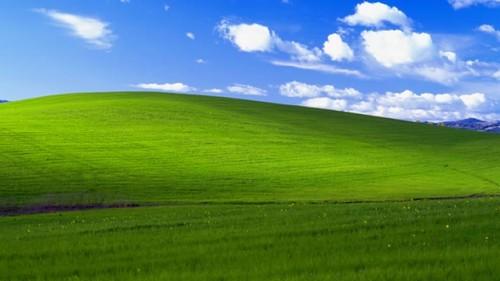 微软劝用户尽快放弃XP系统(图片来自cnbeta)