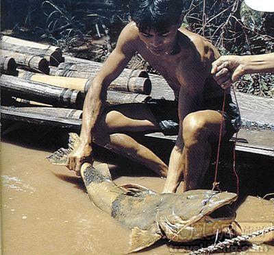 河,多年来传闻河里潜伏神秘的水怪.但当地居民说,这个水怪已图片
