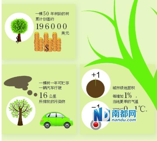 原标题:一棵树的生态价值 林业专家称,一棵正常生长50年的树,按木材