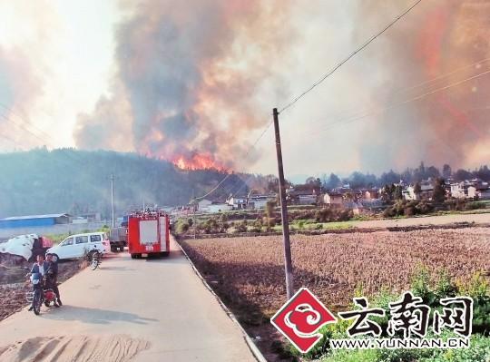 记者从省森林防火指挥部获悉,截至前日23时10分,经过军警民2780人的全力扑救,发生在腾冲县腾越镇云山社区河外村小组的森林火灾明火全部扑灭,已经转入火场清守阶段。据初步调查,火场过火面积在53公顷左右,起火原因系当地村民烧地用火不慎引发,嫌疑人已被森林公安部门控制。 春城晚报 记者 崔敏 通讯员 杨从宇 张启义 摄影报道