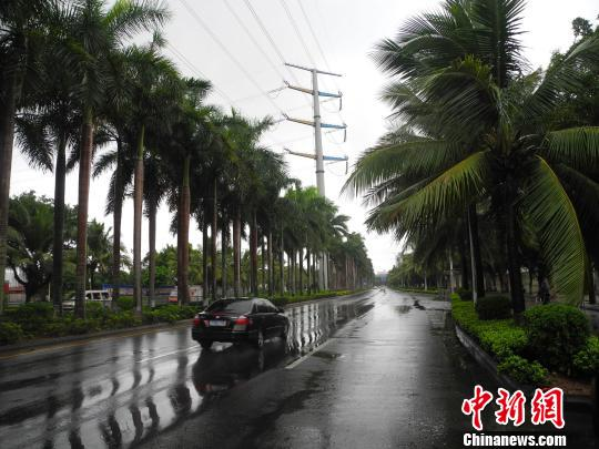 海口市风雨不大,路上车辆不多,交通顺畅。 王子谦 摄