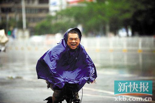 湛江市区,一男子在暴风雨中艰难骑行 高清图片