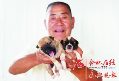 ○在尚未建成的新基地裡出生的小狗狗,負擔更重瞭。