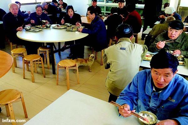 宾山养老院的食堂老人们。 (南方周末记者 刘炎迅/图)