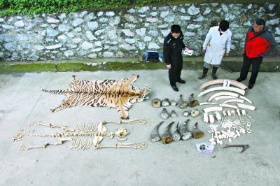 濒危野生动植物及其制品的犯罪