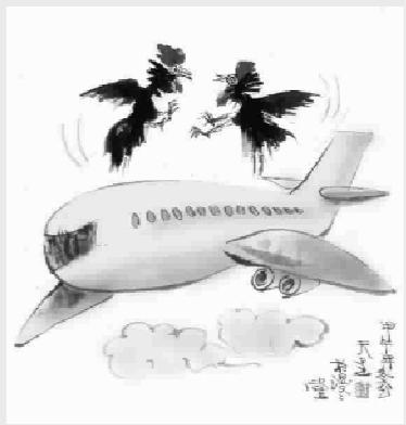 """飞机上的""""飞鸡"""""""
