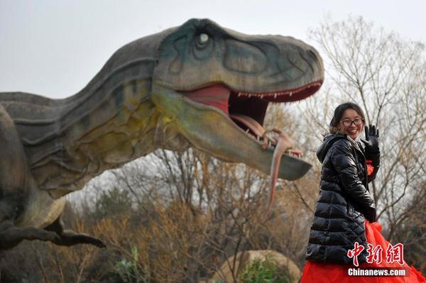 """2月1日,山西太原动物园,华北最大的恐龙嘉年华""""重返侏罗纪""""正式对外"""