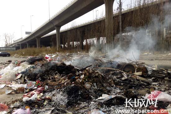 天津:生活垃圾堆放路边 随意焚烧污染环境(图)