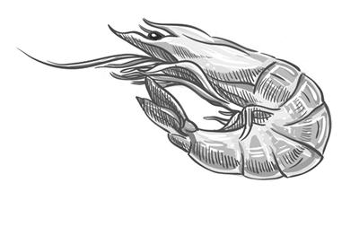 海鲜 虾和深海鱼蛋白质含量也高,但还是不及牛肉.
