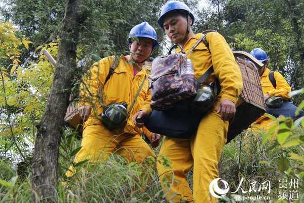 此外,队员们还可以欣赏大自然不同的风景,看着山间的野花,大树,小动物