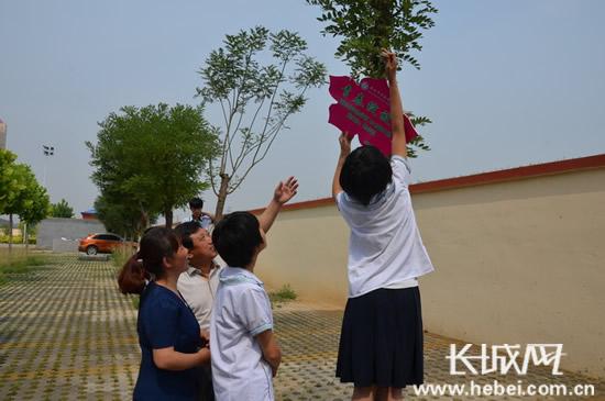 新乐市实验学校举行班树挂牌仪式