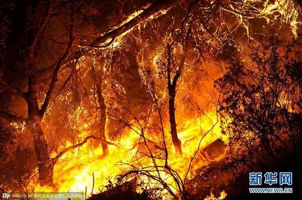 当地时间2015年8月1日,美国加州,森林大火持续.