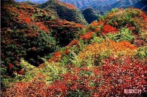 驼梁山景区是国家aaaa级旅游景区,国家重点风景名胜区.