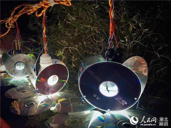 湖北武汉:居民自制万盏环保花灯闹元宵图片