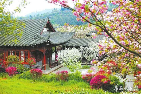 春景高清桌面壁纸
