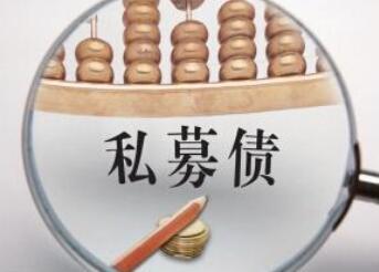 66亿私募债违约案推高上海云峰新风险 发行人