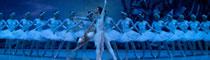 俄罗斯国家芭蕾舞团《天鹅湖》巡演