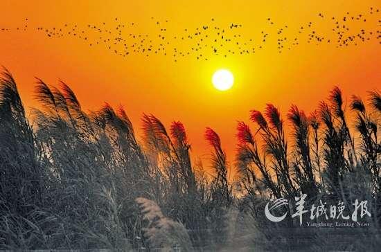 粤美风景名片:盘点广东境内旅游好去处