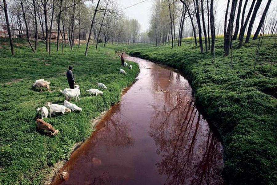 在《中国癌症村地图上》洋桥村、新岗村、广丰村、丹徒区……近500个村子榜上有名,这些村子周围大多建有重污染工厂,排放的废水、废气直接进入到居民的日常饮食中和呼吸道中,导致原本宜居的环境变成鬼蜮。