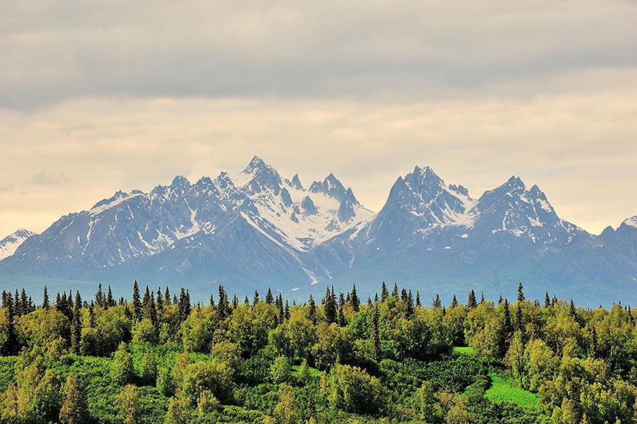 在麦金利山(Mount McKinley),冬季最冷时气温低于零下50℃,探险者需要忍受极低的气温、大风和长时间的冰雪徒步,因此登顶成功率仅为50%,已有一百余人死在了山里皑皑的白雪之上。很多知名的登山家攀登的脚步都是在这里终结的。