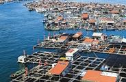 九:海南将划定海洋岸线保护红线 整治修复重点海域环境