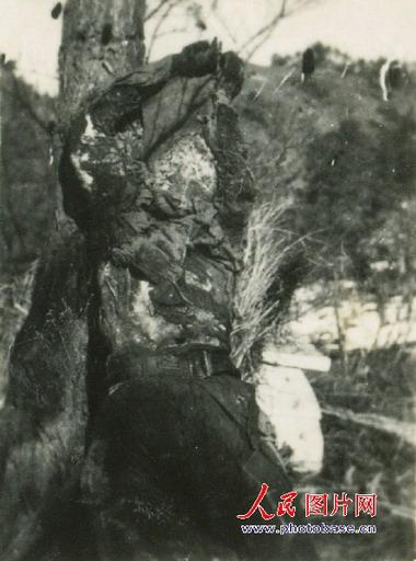 黄继光烈士遗照曝光 胸膛被打成蜂窝状(图) - 白衣天使 - 白 衣 天 使