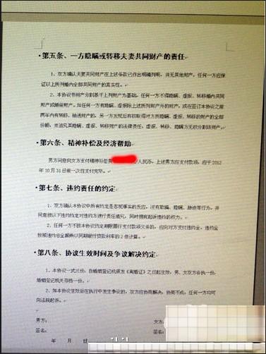 王石离婚协议书(2 /8张) 图片