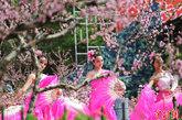 """4月20日,山东省聊城市姜堤乐园第七届樱花节开幕。6位盛装打扮的""""樱花仙子""""游园赏花,为樱花花节增添了气氛。中新社发 郭广亮 摄 图片来源:CNSPHOTO"""