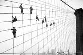 据英国每日邮报报道,一百多年前的纽约旧照近日首次曝光。纽约档案部门从200多万张图片中精心挑选了近100万张对外正式公布,照片反映了当时纽约的生活百态,从忙碌的街道,到港口大桥,甚至还有恐怖的黑帮杀戮。上图为:1914年10月7日,一些画家在纽约布鲁克林大桥的悬索上摆出各种造型。(在布鲁克林大桥交付使用31年之后)[新华国际 奕文]