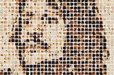 林戈·斯塔尔的肖像。