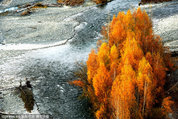 中国秋色最美地 - xjh019(汉江石) - 汉江石的博客