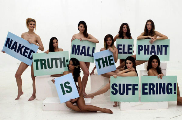 女星声援保护动物 拍摄全裸公益广告[高清大图]