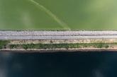 香港大埔船湾淡水湖。(实习编辑:温存)