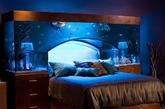 鱼缸床头柜(实习编辑:温存)