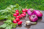 蔬菜2部位全是农药吃了致命