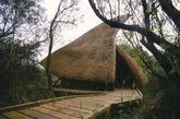 芦苇小屋,chris drury,2002(实习编辑:周芝)