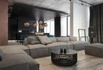 黑与白  简约别致的2套时尚公寓设计