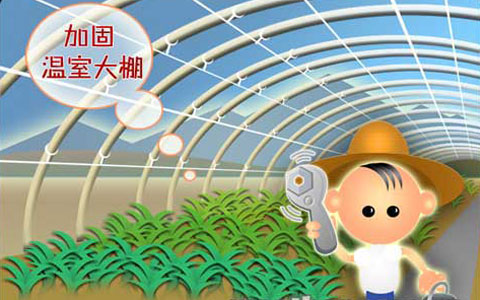 农业防台小提示