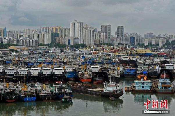 海口新港码头停靠了众多避风船只。